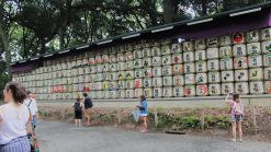 Things to see in Japan | Tourist attractions in Tokyo | Japanese attractions